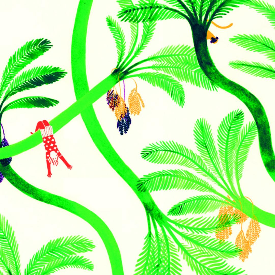 La Foresta - Terre di Mezzo