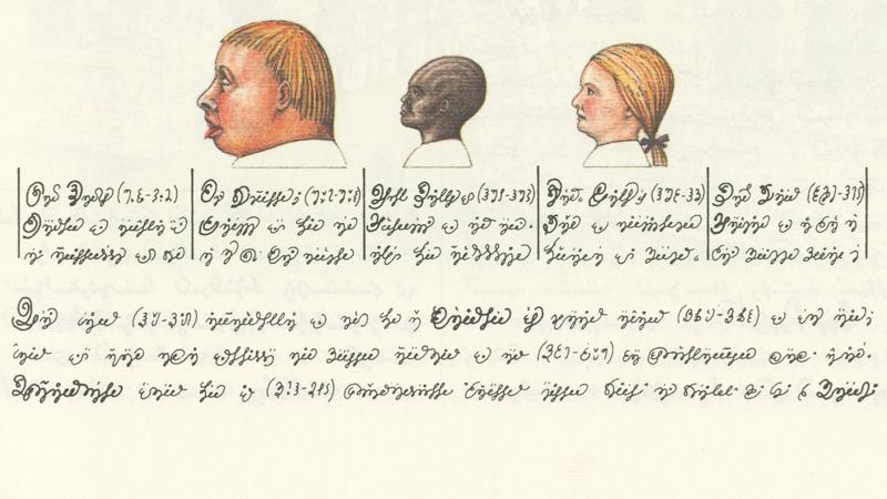 Codex Seraphinianus - Volti